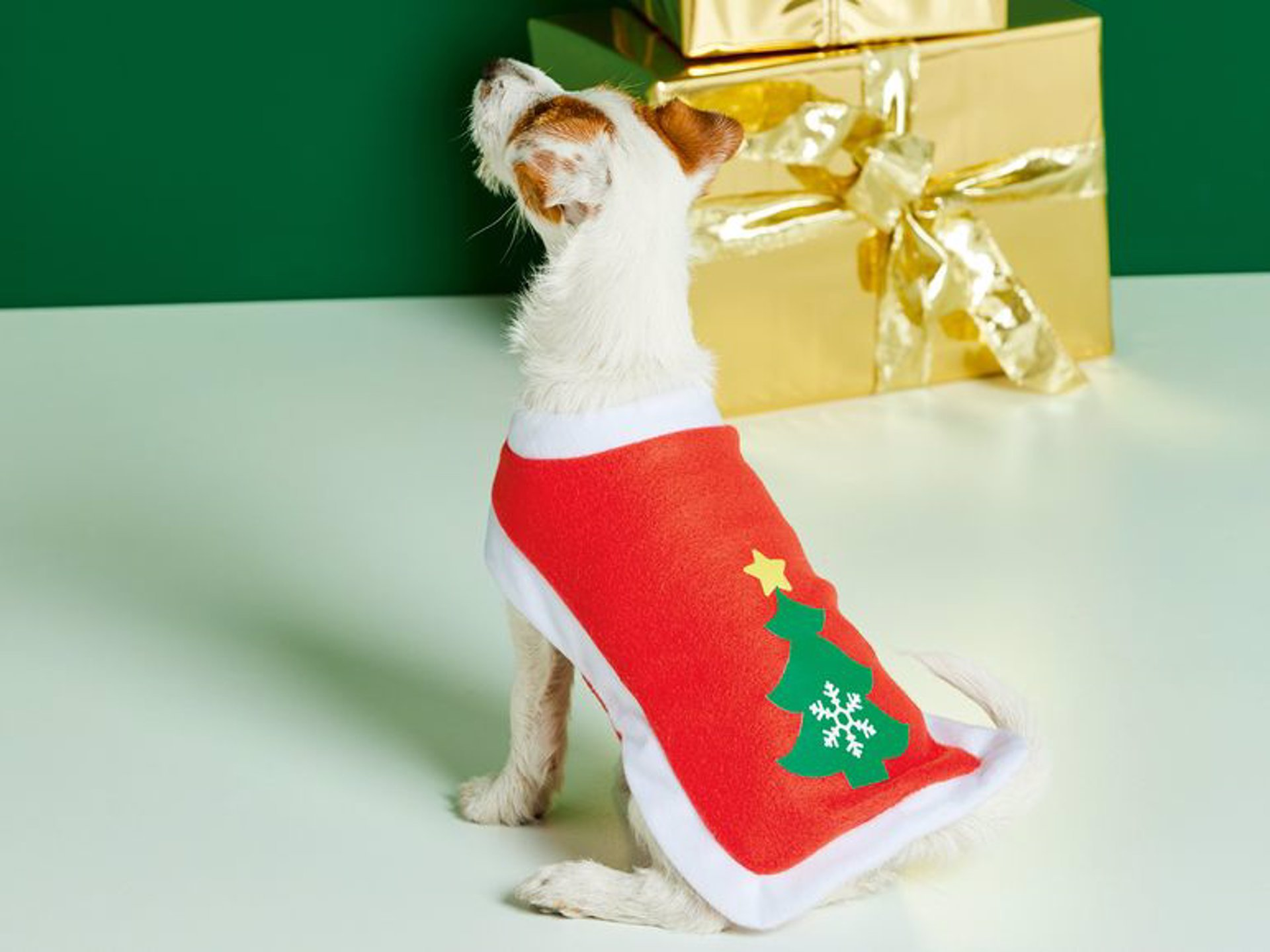 disfraz, traje mascota (perros)  motivos navideños lidl