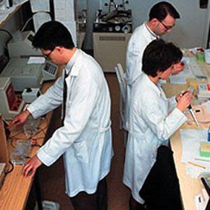 Desvelan las características genéticas del parásito de la malaria