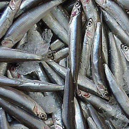 Investigadores españoles desarrollan una salmuera que permite neutralizar el anisakis sin congelar el pescado