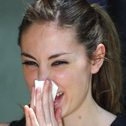 Gramíneas y arizónicas, principales causas de los casos de alergia en España
