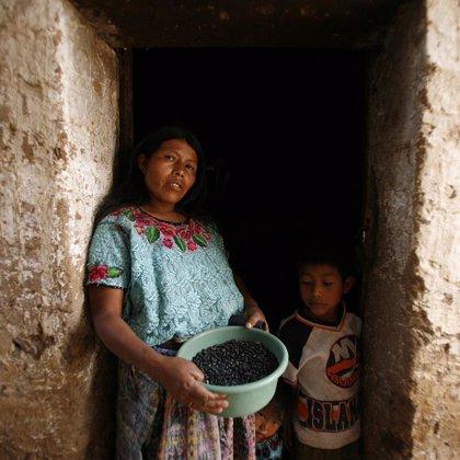 La crisis alimentaria mundial, a examen desde hoy en la sede de la FAO en Roma