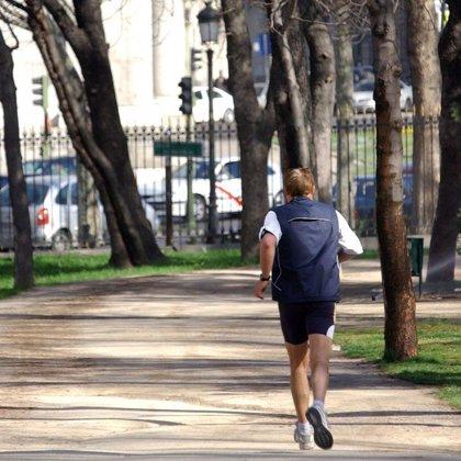 Hacer ejercicio quita las ganas de comer porque afecta a las hormonas del apetito