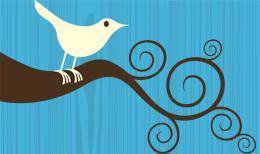 Logotipo de la red social twitter