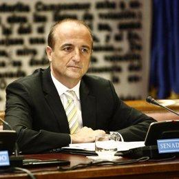 Sebastián en el senado