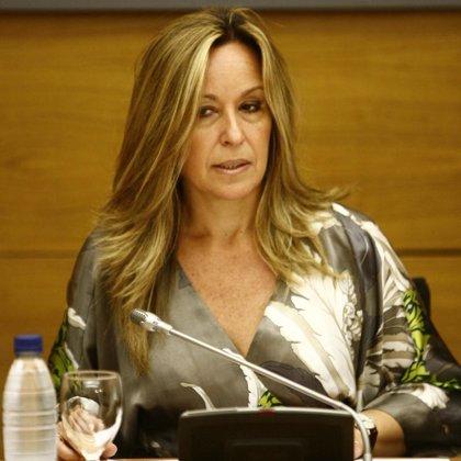 """Jiménez señala que las conclusiones del Consejo Fiscal """"no son vinculantes"""" pero pueden """"mejorar el texto"""""""
