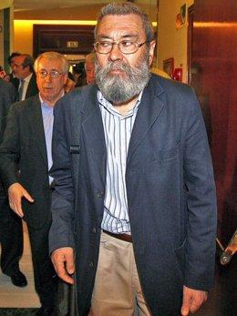 Cándido Méndez e Ignacio Fernández Toxo