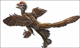 Dinosaurio ave