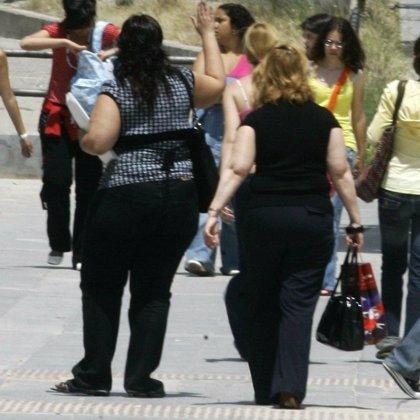 Demuestran la conexión entre una proteína y la obesidad