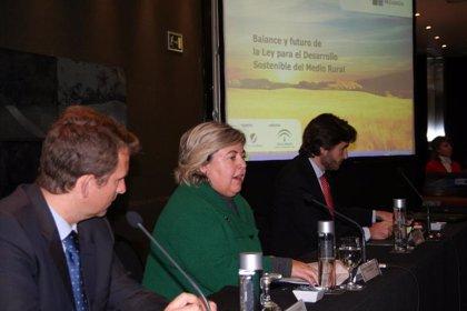 """Aguilera confía en un """"repunte"""" de los precios del aceite de oliva y una campaña normalizada"""