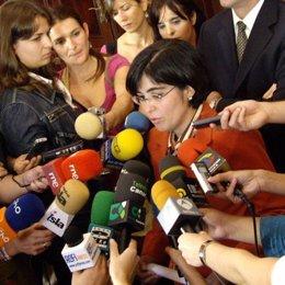La delegada del Gobierno Central en Canarias, Carolina Darias