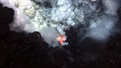 Filman por primera vez lava incandescente que surge del lecho marino