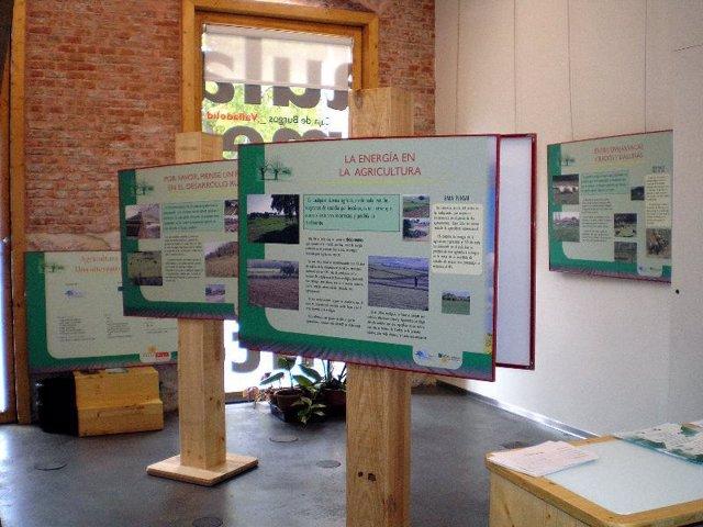Exposición Sobre Agricultura Ecológica Instalada En El Aula De Medio Ambiente Ca