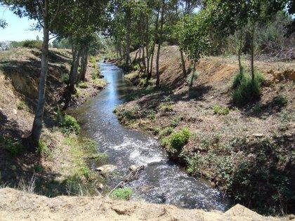 El MARM invierte más de 370.000 euros en la mejora del cauce del arroyo Almucera en Santibáñez de Vidriales (Zamora)