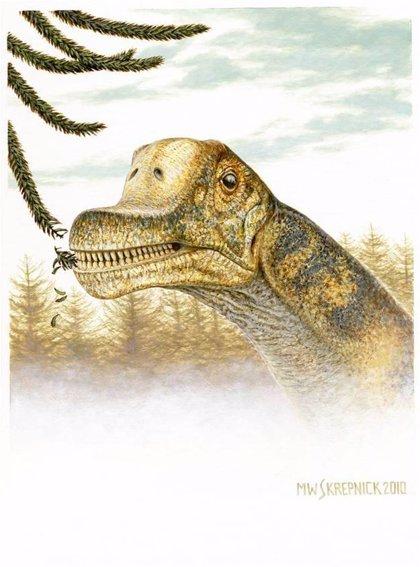 Desvelado El Rostro De Un Dinosaurio Herbivoro De Cuello Largo El dinosaurio de cuello largo. un dinosaurio herbivoro de cuello largo