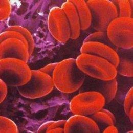 Anticoagulante, sangre, células
