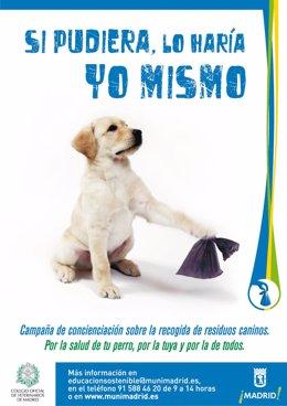 Imagen De Una Campaña Para Promover El Uso De Sanecanes