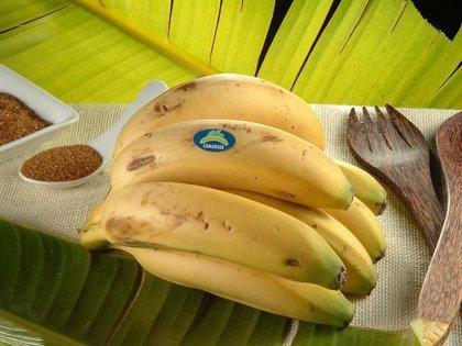 El plátano de Canarias es el producto que más baja de precio en marzo con un 20,2% respecto al mismo mes de 2009