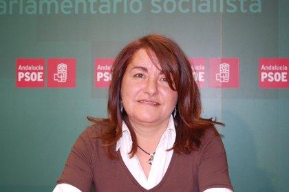 """PSOE pide al alcalde de Lepe que actúe con """"responsabilidad"""" y acometa los accesos del Chare"""