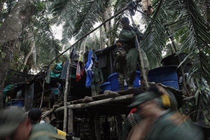 Venezuela desmantela ocho laboratorios clandestinos de cocaína cerca de la frontera con Colombia