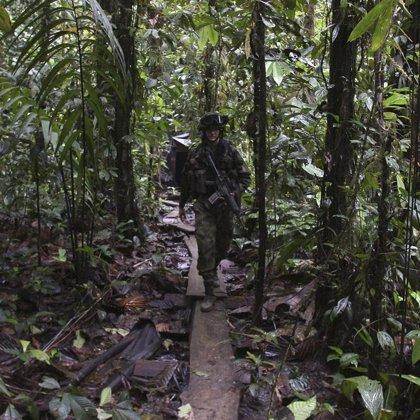 Mueren seis guerrilleros de las FARC, entre ellos el comandante del Bloque 17, en combates con el Ejército