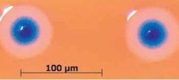 Primera célula artificial