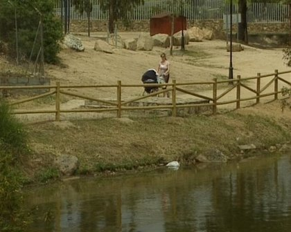 Bañistas de Mérida se quejan del estado de las aguas del embalse de Proserpina por la aparición de algas