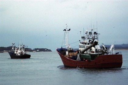 MARM inicia esta semana contactos con cc.aa y sector pesquero para los criterios de reparto de la pesca de caballa 2011