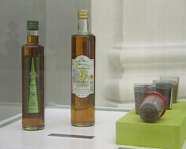 El parlamento extremeño recoge una exposición monográfica sobre el olivo