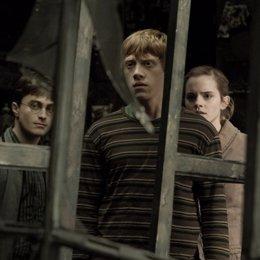 Rupert Grint en Harry Potter y el Misterio del Príncipe