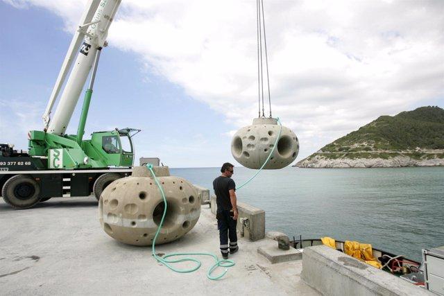 Instalación de bloques de cemento para crear un arrecife artificial en El Garraf