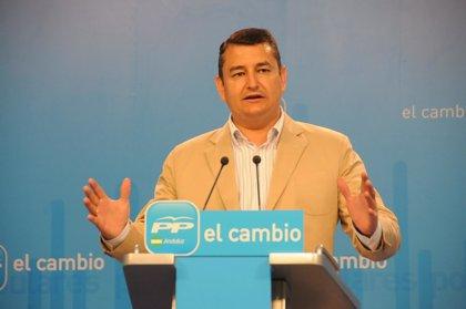 Sanz (PP-A) aplaude que el PSOE quiera diálogo sobre las cajas de ahorro pero lamenta que no haya sido antes