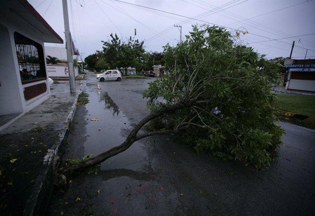 Tormenta tropical Alex en México