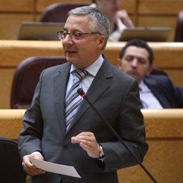 El ministro de Fomento, José Blanco, en el Senado
