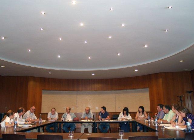 Reunión de la Comisión Ejecutiva de ADELPA