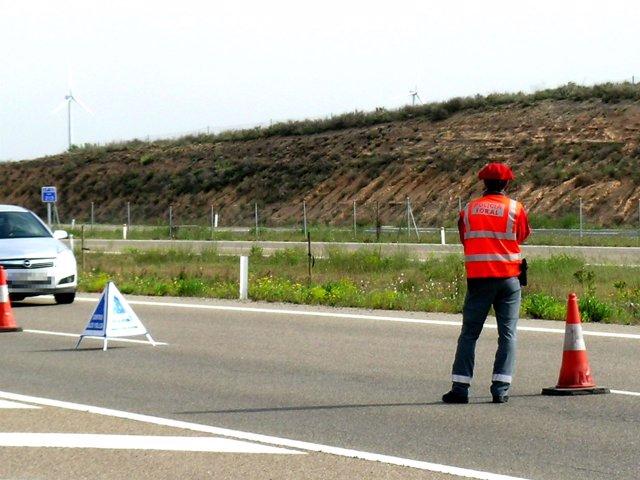 Un agente de la Policía Foral, en un control de carretera.