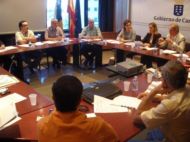 Comisión de Seguimiento del Convenio de Colaboración en materia de Inspección Fi