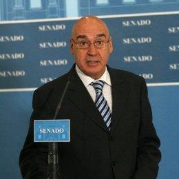 El presidente del Senado, Javier Rojo