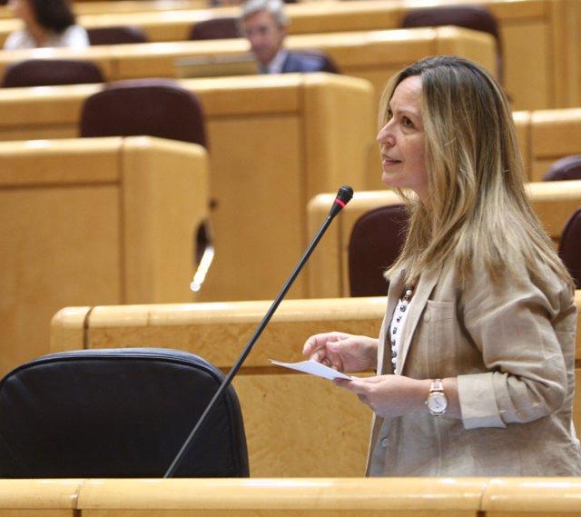 Trinidad Jiménez en el Senado