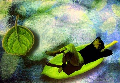 La compañía italiana TPO representa en Lanzarote la obra 'El jardín japonés'