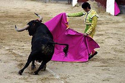 Toros.- Cataluña decide hoy la prohibición de las corridas con la incógnita de CiU y PSC