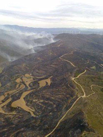 Gobernación decreta la preemergencia ante el riesgo de incendios forestales en toda la Comunitat Valenciana