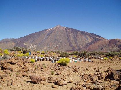 Tenerife se promociona en el norte de Europa a través de reportajes promocionales de la isla