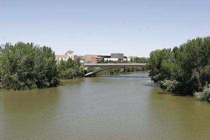 CHD invierte 2,1 millones para recuperar la ribera del Pisuerga en Arroyo y el arroyo Poza Moza en Fuensaldaña