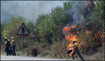 Continúa activo, aunque desciende al nivel 0, el fuego iniciado el viernes en Villarino (Salamanca)