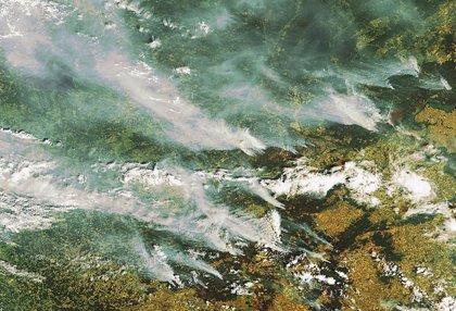 Protección Civil alerta de riesgo alto de incendios en Galicia, Andalucía y Extremadura
