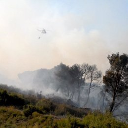 Incendio forestal de Zuera en Zaragoza