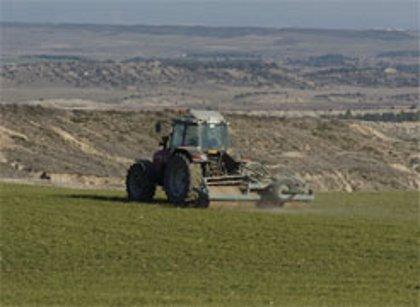 Desarrollo Rural programa varios cursos para la incorporación de jóvenes a la actividad agraria