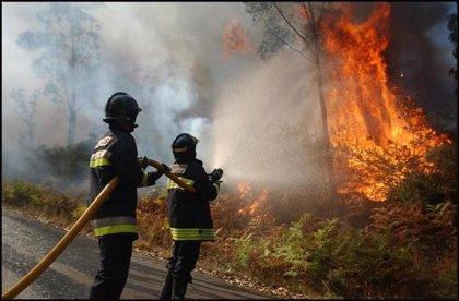 Permanece activo un incendio en Viana do Bolo (Ourense) que ha arrasado unas 100 hectáreas