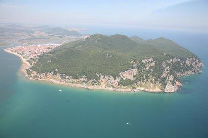 Costas remite a la Audiencia Nacional el expediente de deslinde en las marismas de Santoña recurrido por una conservera