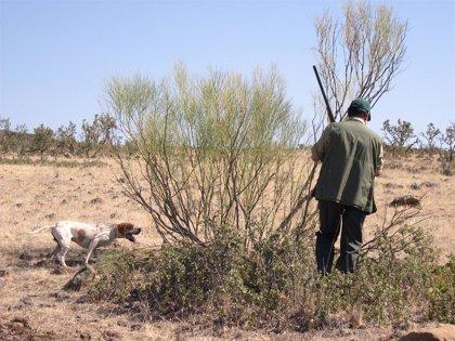 La Guardia Civil detuvo en CyL a siete personas en el primer semestre de 2010 por delitos relacionados con la caza